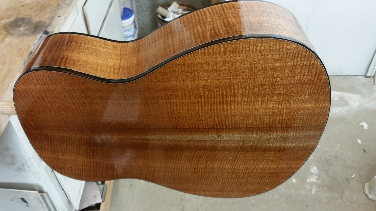"Nexus 38 ""Anno"" Red Spruce Top New York Hog Mahogany Back & Sides"