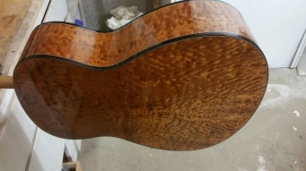 "Nexus 35 ""Lumina"" Red Spruce Top Pomelle Sapele Back & Sides"